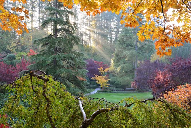 Autumn at Butchart Gardens